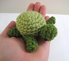 Sea_turtle_3_small