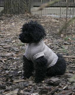Hannahsweater_small2