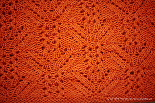 Knitting-june08-2014_mg_9267_scaled_watermarked_small2