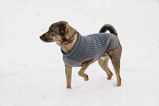 Dogsweater_catalog_r1_03_small2