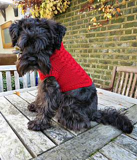 Ravelry: Dog Jumper pattern by Bonny Bonafilla