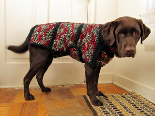 Ravelry Dog Sweater Jacket Pattern By L Squared