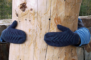 Snoqualmie-point-mittens-and-cailyn-008-800x600_small2