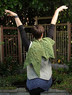 Alysha_green__gray_blue_vests__back__arms_small2