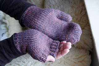 Munjoy_hill_mitts_1_small2