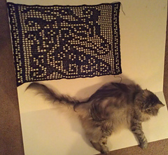 Dragon_doily_with_cat_small