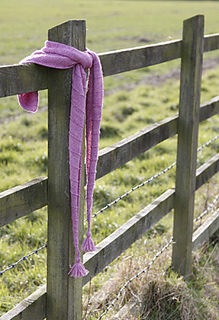 2609_scarf_on_fence_2_small2