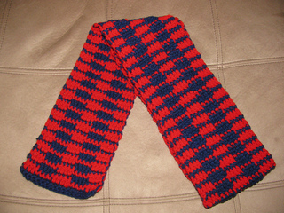 Special_olympics_scarf_1-1_small2