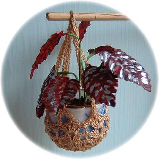 Plant5c_small2