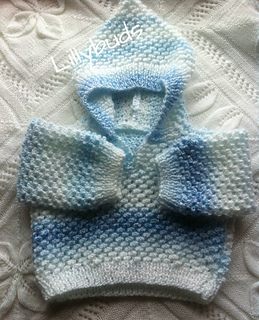 Blue_hoody_2_l_small2