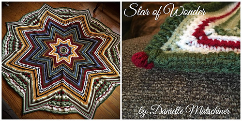 Star_of_wonder_danielle_1_medium