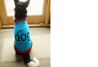 Luna_dog_sweater_11-10__3__small2
