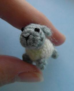 Sheep1_small2