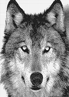 Husky250x348_klein_small2