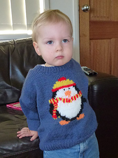 2013_-_july_15_-_penguin_pullover_1_small2