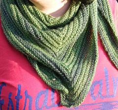 Simplicity_trialngular_shawl_in_green_small