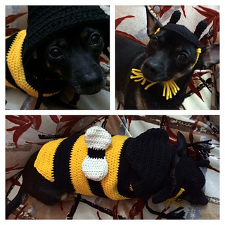 ravelry dog sweater hunde pulli c pattern by julia marquardt. Black Bedroom Furniture Sets. Home Design Ideas