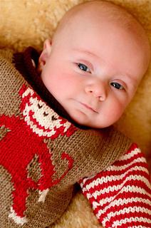 Monkey_sweater_small2