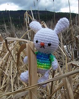100_7020__2__bunny_buddy_1_small2