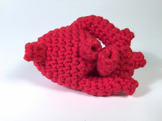 Ravelry: Crocheted Anatomical Human Heart Pattern pattern ...