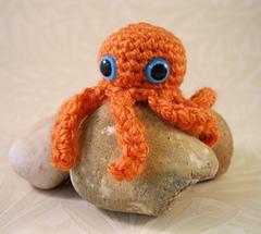 Octopus_01_small
