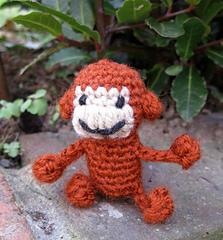 Mini_monkey_03_small