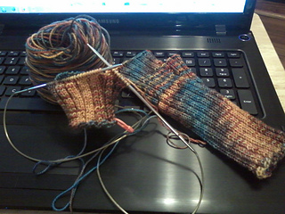 Fingerlessgloves_small2