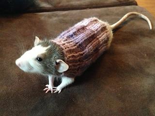 Ravelry: Rat sweater pattern by Anne Knight