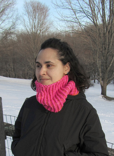 Electric_reversible_shaker_cowl_pic1_small2