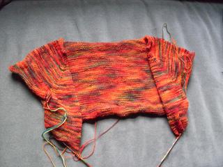 Knitting_november_2009_007_small2