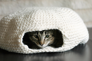 Cat_oven_4_small2