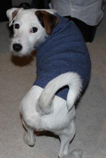 Sweater1_small2