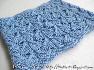 _img_2984_willowcowl_small2