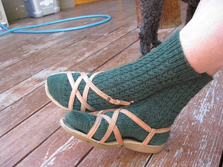 Tau_socks_small2