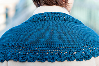Teal_back_across_shoulders_small2