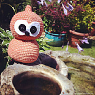 Zingy-06_small2