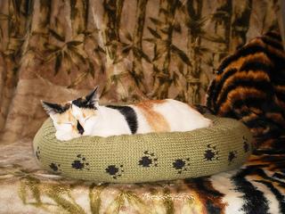 Dog_cat_bed_shiri_designs_02_11_portrait_small2