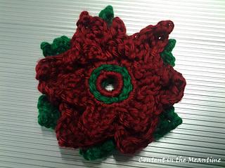 Poinsettia_done_small2