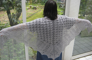 Mothshawl2_small2
