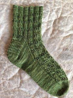 Cholla_sock_small2