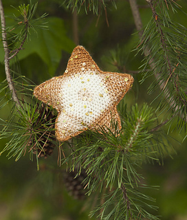 Starbright_star_in_polaris_ravelry_small2