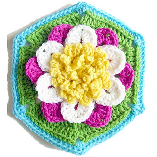 Water_lily_hexagon_1_small2