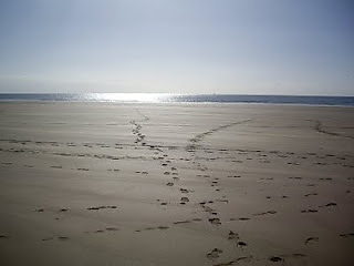 Whitsand_bay_2_small2
