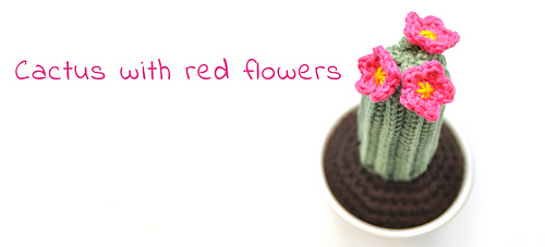 En-cactus-red-flowers_medium