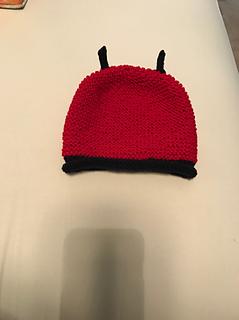 Coccinella_hat_small2