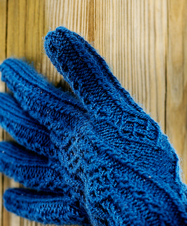 Gloves2recrop_small2
