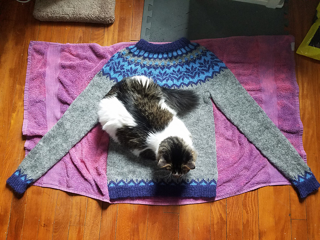 The sweater is blocking on a towel with a cat sitting on it