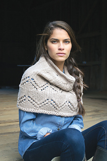 Cowl-_2-of-1__small2