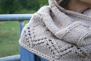 Cowl-_18-of-1__small2