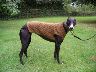Knitting Pattern For Whippet Coat : Ravelry: Dog Coat and Blanket pattern by Sirdar Spinning Ltd.
